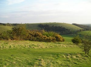 Old Winchester Hill